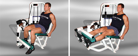 Упражнения для ног Экстензия для передней поверхности бедра